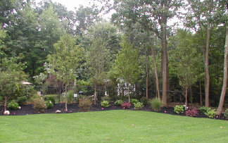 suffolk-sod-install-reviews001001.jpg